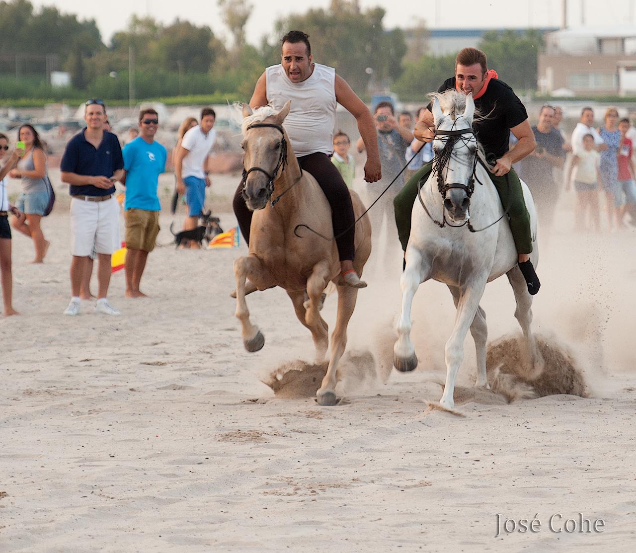 caballos_5
