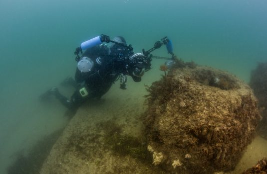 Arrecife Malvarrosa