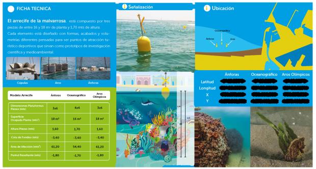 La visita del arrecife permite conocer una parte de la riqueza marina que caracteriza el litoral valenciano. Click para ampliar.