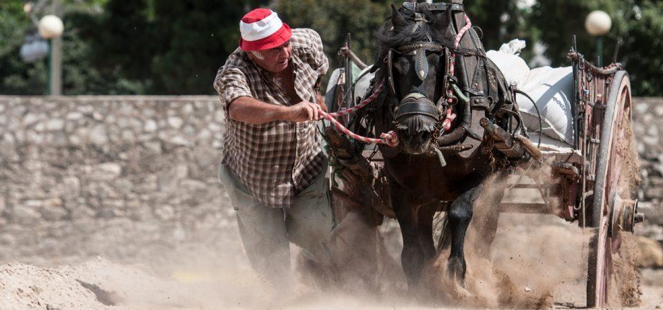 """XII Concurs de Tir i Arrossegament """"Ciutat de València"""""""