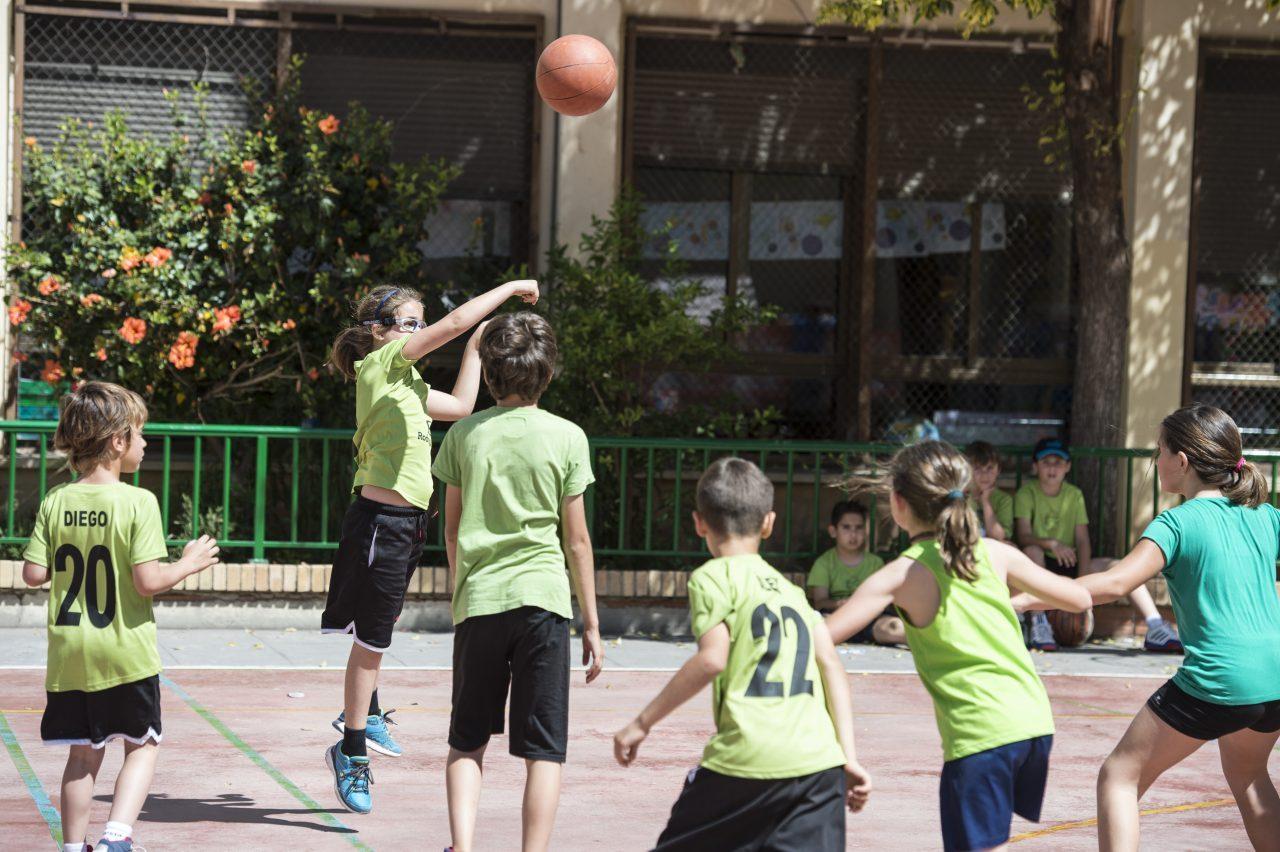 Nou període d'inscripció de les Escoles Esportives de València