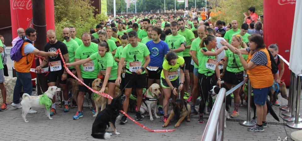 6ª Can-rrera popular de Valencia