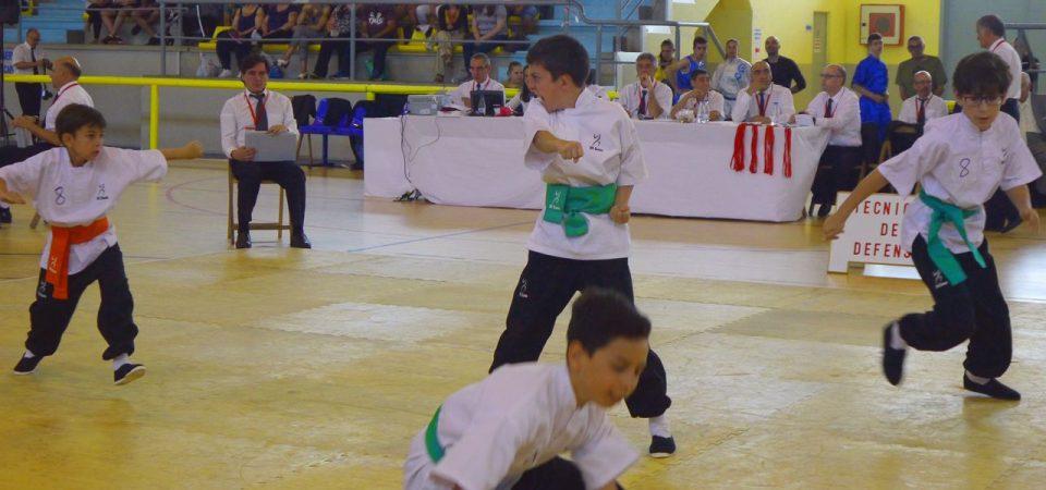 Campionat Autonòmic Kung Fu 2019.