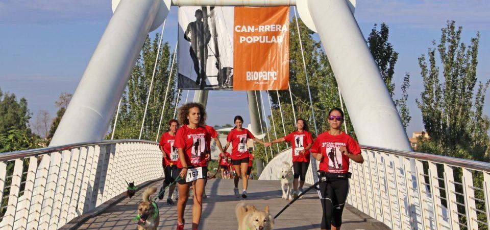 7ª Can-rrera Popular de València